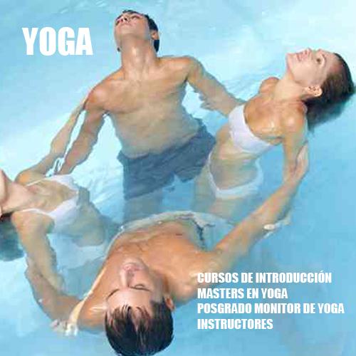 Máster En Yoga