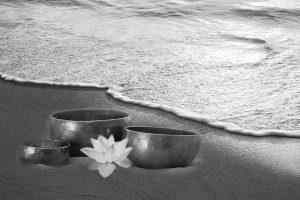 efectos asombrosos de la meditación wb