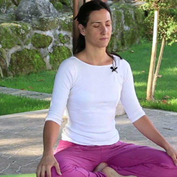 curso hatha vinyasa yoga