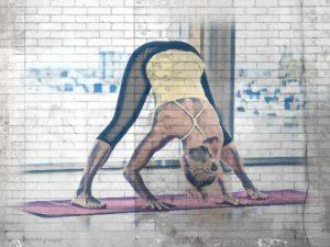 pies en las posturas de yoga-Prasarita-Padottanasana