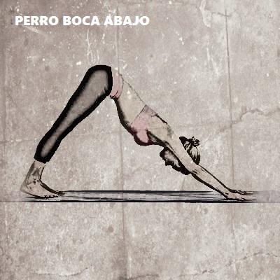 posturas de yoga para esculpir brazos 2
