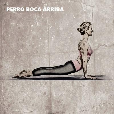 posturas de yoga para esculpir brazos 6